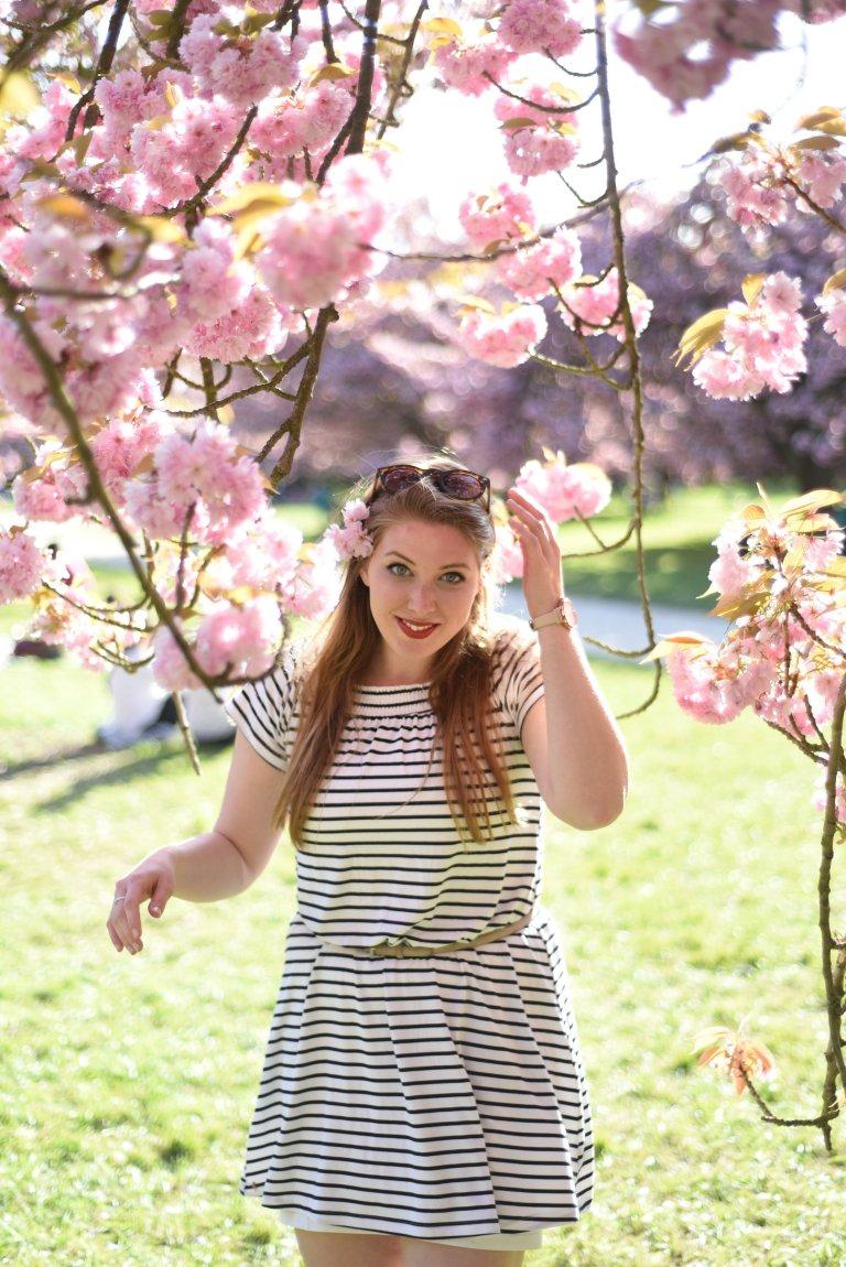 CherryBlossoms2017-169